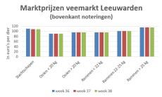 Grafiek met marktprijzen van slachtschapen en slachtlammeren op veemarkt Leeuwarden