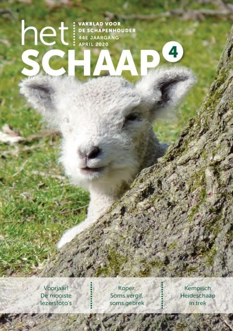 vakblad Het Schaap cover april 2020