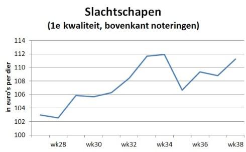 Grafiek laat zien dat de gemiddelde marktprijs van slachtschapen stijgt