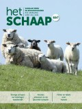 cover juni-juli 2021 vakblad Het Schaap