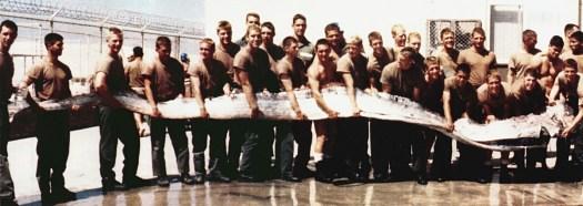 Sildekonge som blev fotograferet i 1996 ved stillehavet