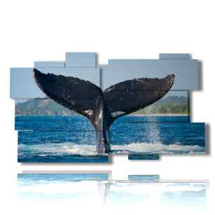 painting-with-whale-tail-fish