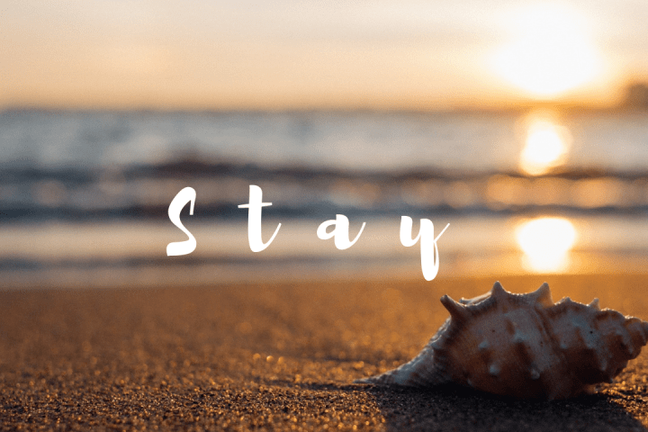 Roll and Coasters: Stay