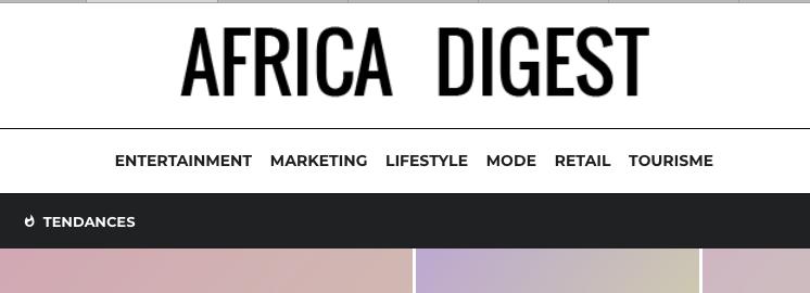 Aperçu du site Africa Digest