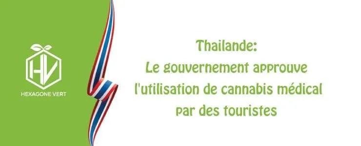Thaïlande : approbation du cannabis médical pour les touristes