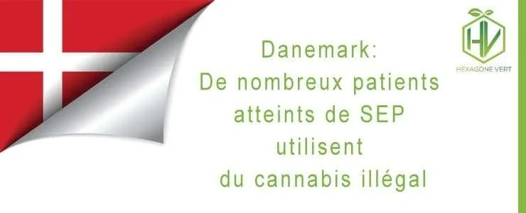 De nombreux patients atteins de SEP utilisent du cannabis