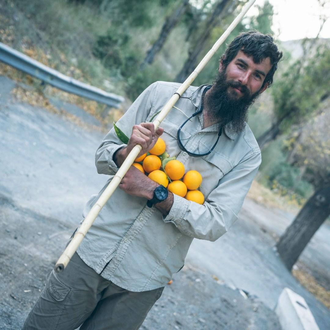 Notre récolte du jour en Orange
