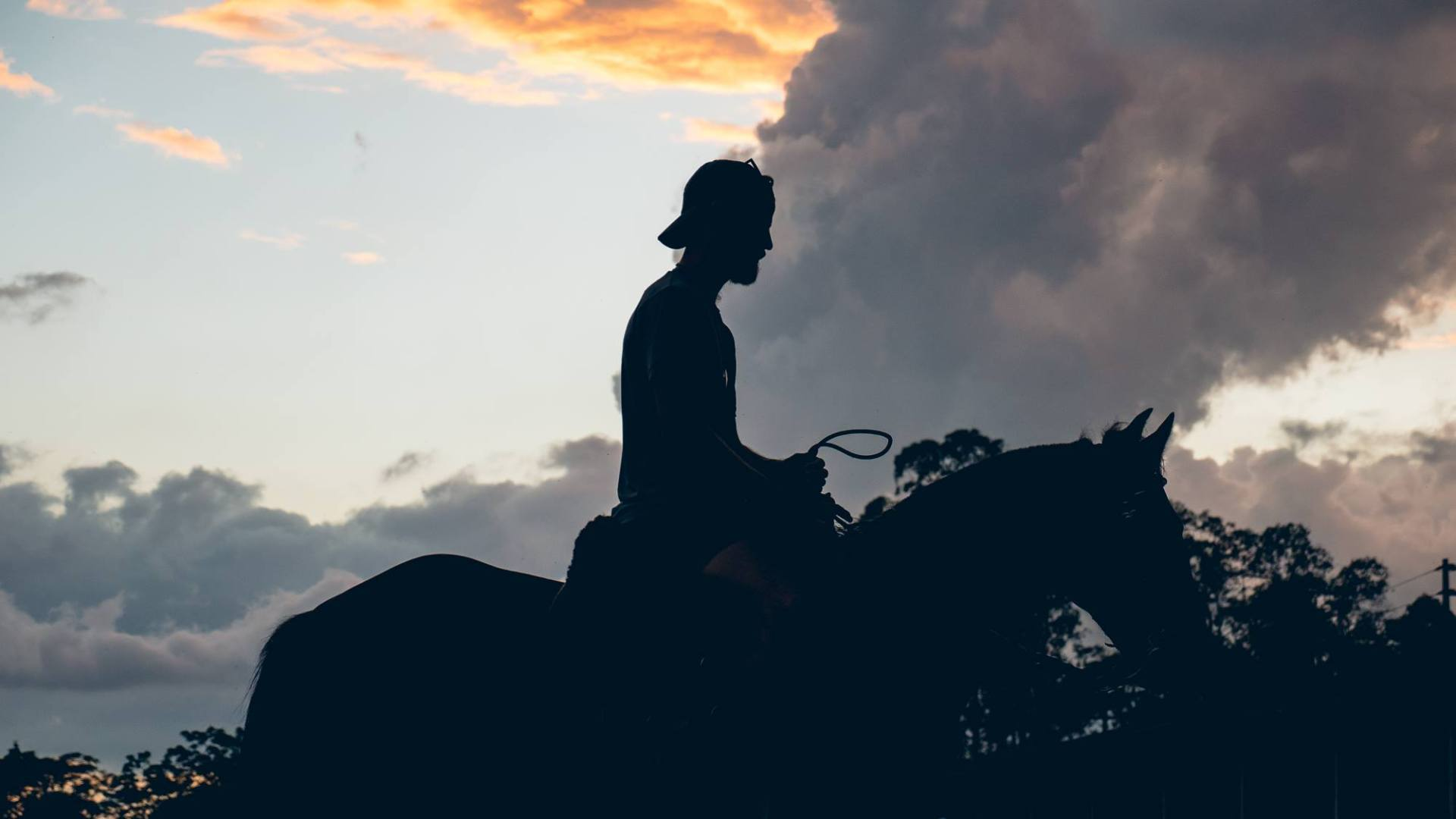 Martin à cheval