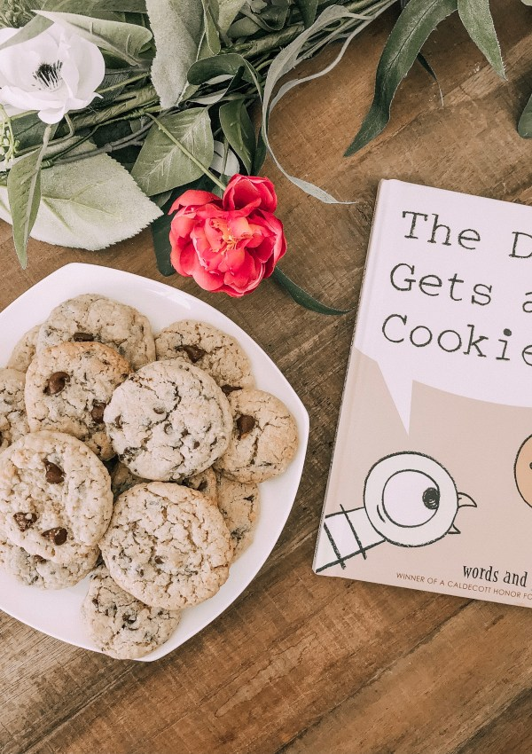 A Pigeon-Inspired Chocolate Chip Cookie Recipe