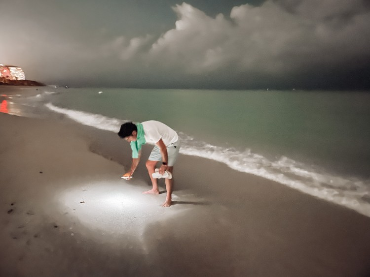 south beach miami beach at night W hotel