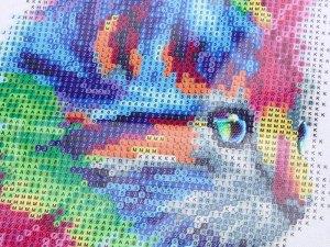 Toile chaton arc-en-ciel - Peinture diamant 5D