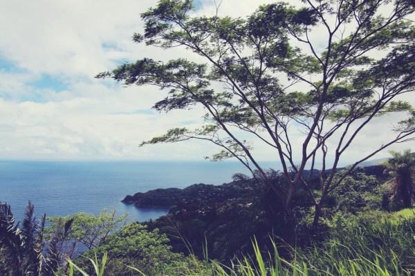 Island Tour  | Tobago