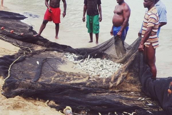 Seine Nets - Castara, Tobago