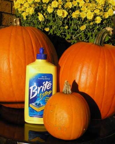 Monday Mini Project: Preserve Those Pumpkins