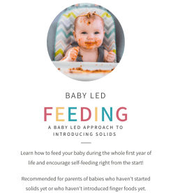 Baby Led Weaning Course Discount Feeding Littles Baby led