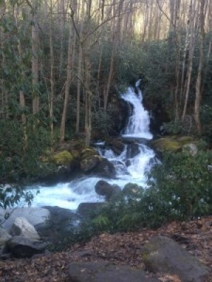Mouse Creek Falls at Big Creek Smoky Mountains National Park