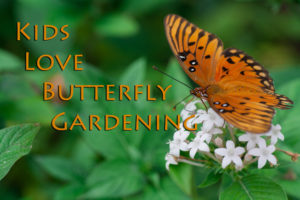 Master Gardeners butterfly gardening for kids!