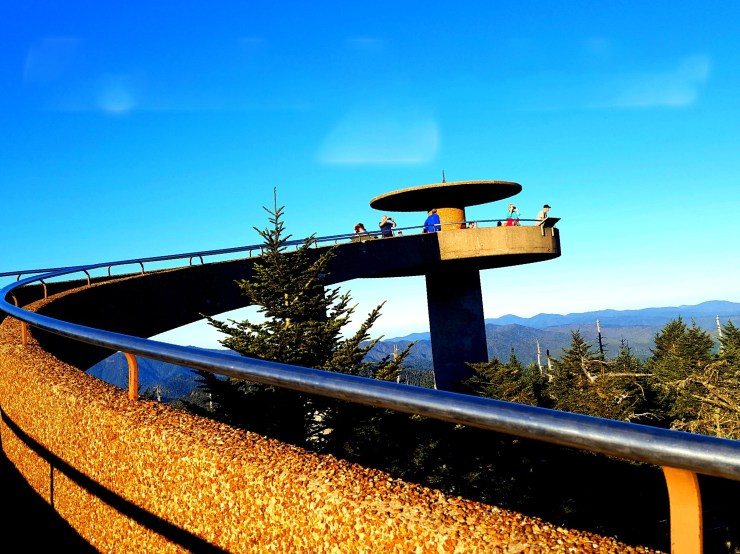 Clingmans Dome is the perfect spot to get a bird eye view of all the fall color!