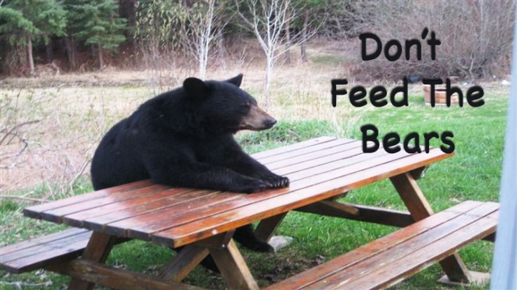 Don't feed the bears event will help rescue orphaned bear cubs!