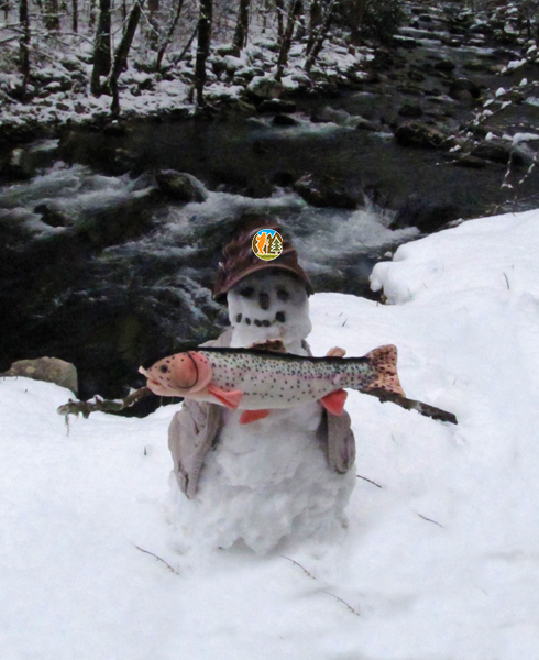 Smoky Mountain winter fishing is the thing to do!