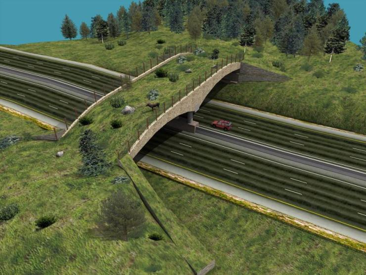 The Pigeon River gorge interstate wildlife crossing will provide safe passage for bear, elk and their furry friends!