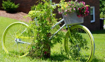 Turn an old Bike into Yard Art Planter