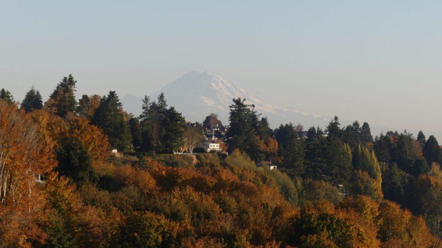 Discovery Park & Mount Rainier Seattle WA