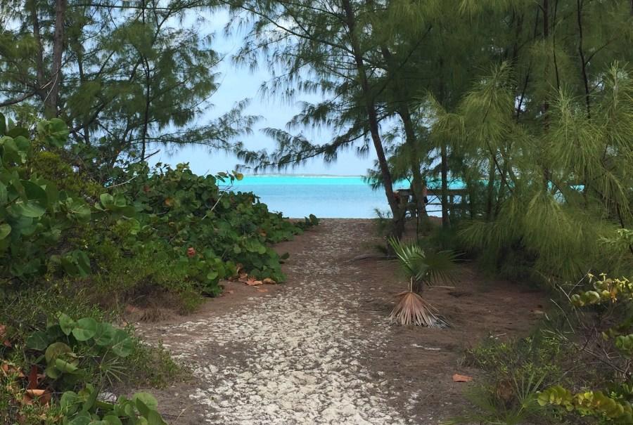 Trail to Hoopers Bay Beach