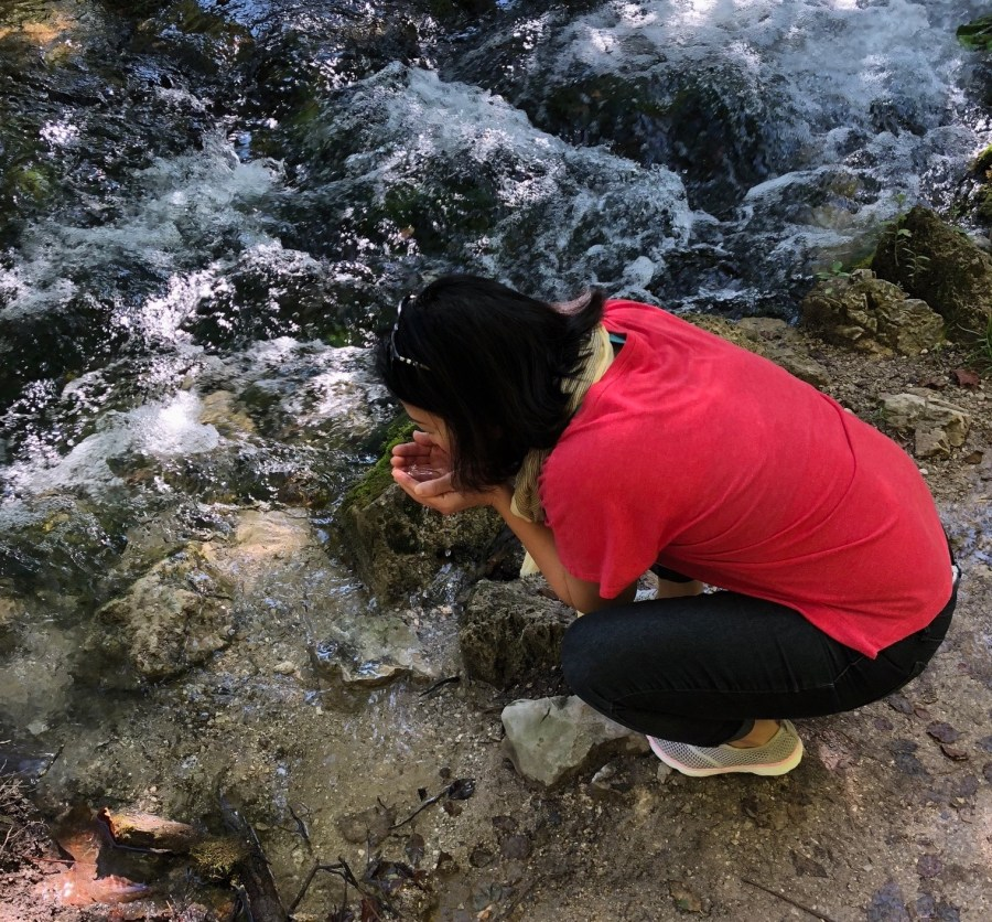 drinking water from a stream in Plitvice Lakes National Park, Croatia