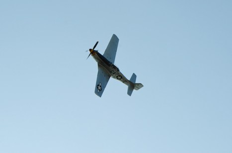 Red Tails-5