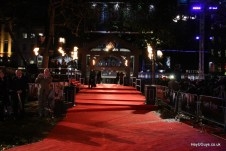 Harry Potter and the Deathly Hallows Part 1 World Premiere-10