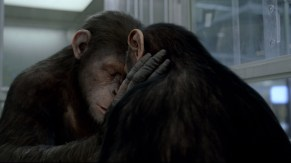 Caesar: Rise of the Planet of the Apes still: Here, the film's central protagonist Caesar (left) forms an unexpected bond with Cornelia, amid challenging conditions
