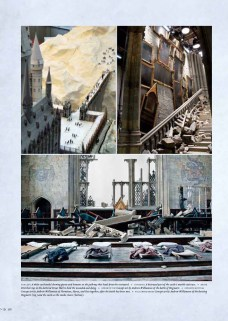 Harry Potter - Page to Screen (8)