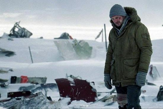Liam Neeson - The Grey