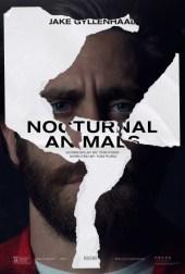 nocturnal_animals_ver3