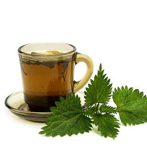 19635000 - tea cup with nettles leaves on a white background