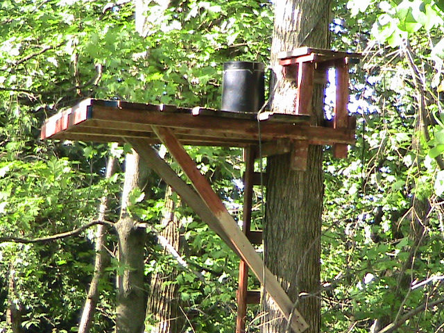 pdf plans wooden tree stand plans download outdoor potting