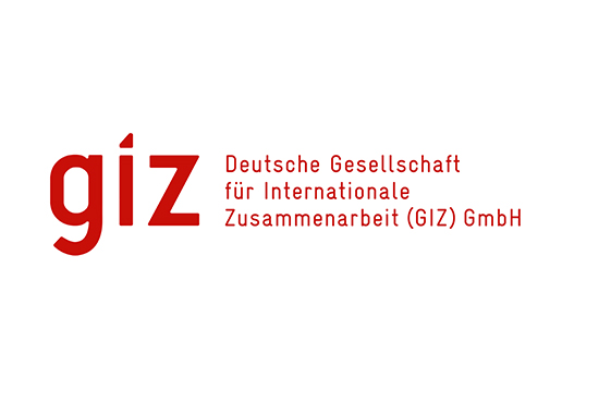 Giz Finance and Administration Consultant Tender Announcement