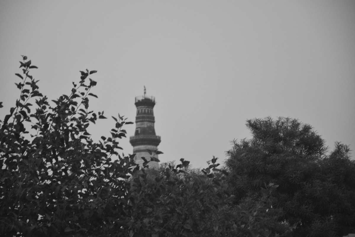 Mehrauli and You : Our Monthly Walk