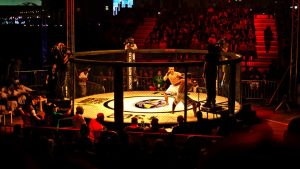 MMA vs Krav Maga
