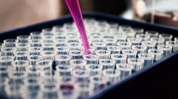 Bioterrorism: The Greatest Human Threat