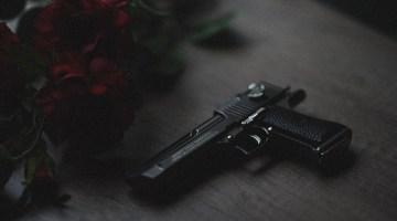 guns for felons