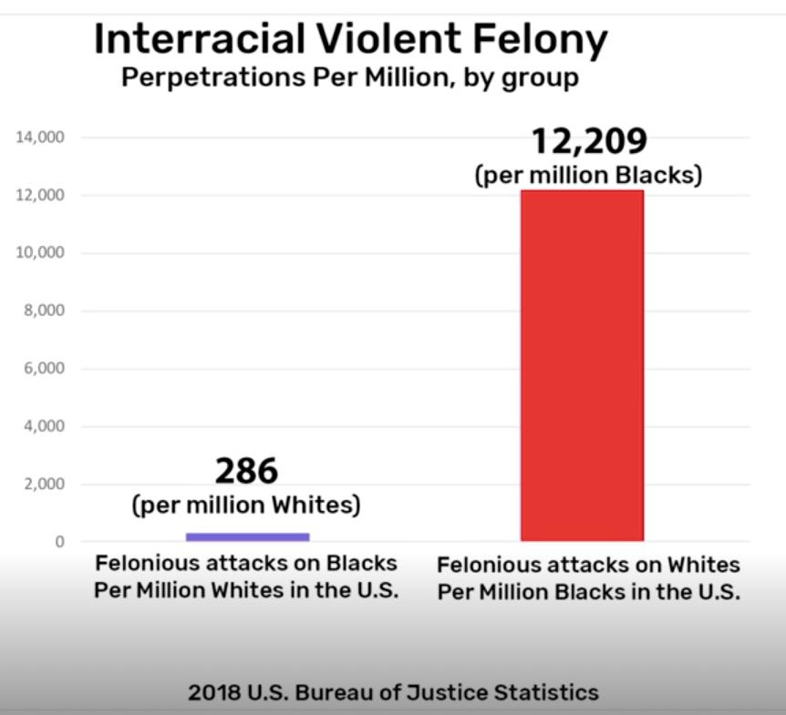 Interracial crime satistics