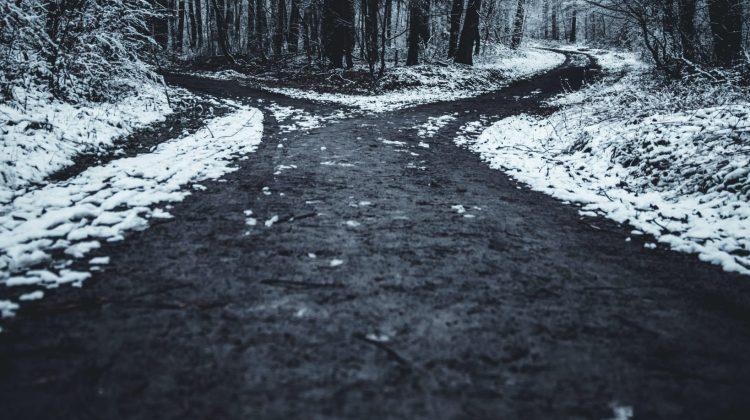 Path Forward For Americans