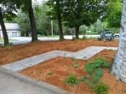Design Tips for Front Yard Wildlife Gardens
