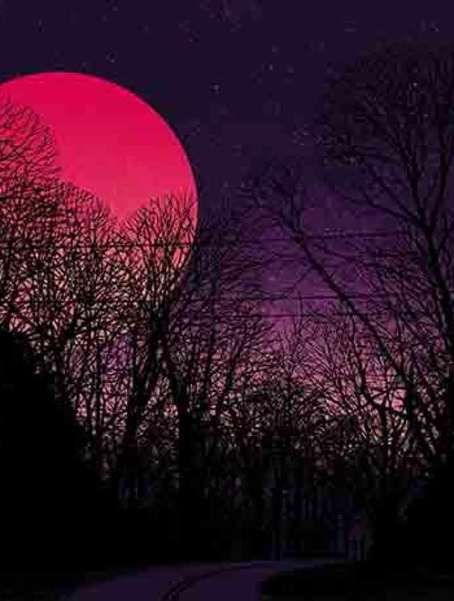 """Super Blue Blood Moon"" by Dan McCarthy"