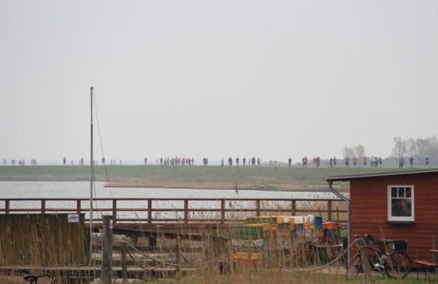 Läufer auf dem Boddendeich zwischen Vitte und Kloster