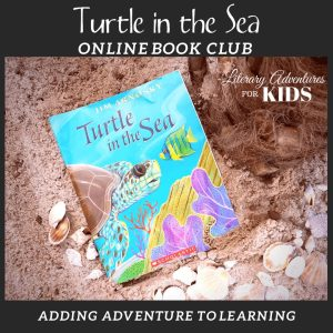 Turtle in the Sea Online Book Club