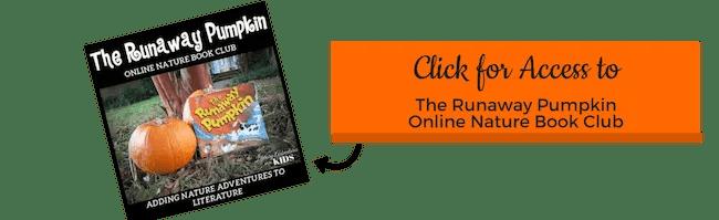 CTA The Runaway Pumpkin Book Course