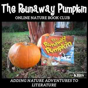 The Runaway Pumpkin Online Nature Book Club